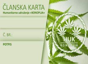 HUK-konoplja-CLANSKA